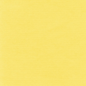 Speed Zone- Solid Yellow Paper