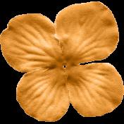No Tricks, Just Treats-Solid Orange Flower