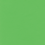 Speed Zone- Solid Green Paper