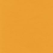 Speed Zone- Solid Orange Paper