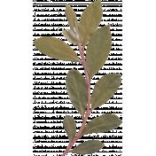 My Baptism- Green Leafy Branch