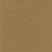 Turkey Time Solid Papers- Solid Brown Paper