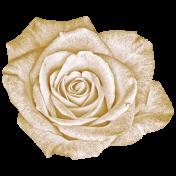 Vintage- November Blogtrain White Rose