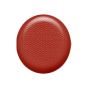 Sweet Valentine- Red Brad