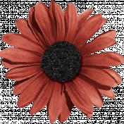 Sweet Valentine- Red Flower