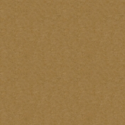 Kraft Papers- Set 01- Texture 03