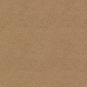 Kraft Papers- Set 01- Texture 04