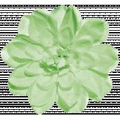 Sunshine And Lemons- Green Flower