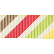Rain, Rain- Colorful Diagonal Striped Ribbon