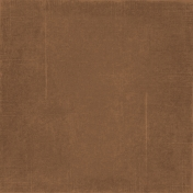 At The Beach- Brown Solid Paper