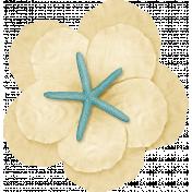 At The Beach- Cream Flower