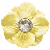 Oh Baby, Baby- Yellow Flower