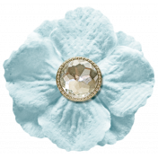 Oh Baby, Baby- Blue Flower With Diamond