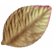 Oh Baby, Baby- Brown Craft Leaf