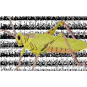 Pond Life- Grasshopper