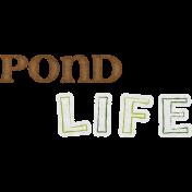 Pond Life- Pond Life Word Art