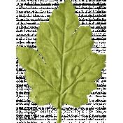 School Fun- Green Craft Leaf