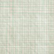 School Fun- Teal Doodled Grid Paper