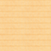 Summer Daydreams- Brackets Paper- Orange
