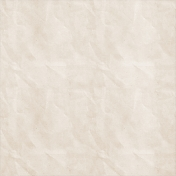 School Fun- Solid Crinkled Paper- White