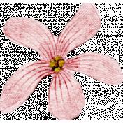 Meet Me In Paris- Vintage Flower Pink