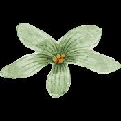 Meet Me In Paris- Vintage Flower Green