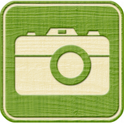 Outdoor Adventures- Recreational Icon Woodchips- Camera