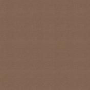 Outdoor Adventures- Solid Paper- Brown