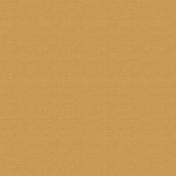 Outdoor Adventures- Solid Paper- Camel