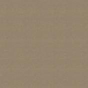 Outdoor Adventures- Solid Paper- Light Brown