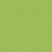 Outdoor Adventures- Solid Paper- Light Green