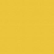Outdoor Adventures- Solid Paper- Yellow