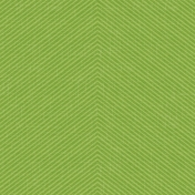 Outdoor Adventures- Geometric Stripes Paper- Green