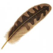 Outdoor Adventures- Brown Feather