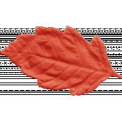Outdoor Adventures- Leaf Red Orange