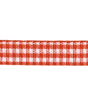 Outdoor Adventures- Red Gingham Straight Ribbon
