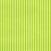 Stripes 80 Paper- Green