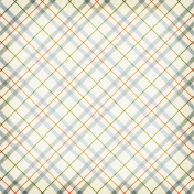 Plaid 41 Paper - Beatrix