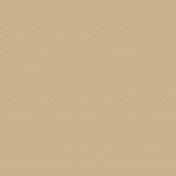 Beatrix Solid Paper- Tan