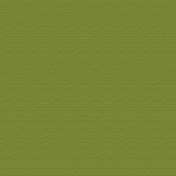 Beatrix Solid Paper- Green