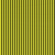 Stripes 54 Paper- Yellow & Black