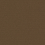 Color Basics Solid Paper- Brown