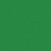 Color Basics Solid Paper- Green