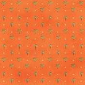 Carrot Paper