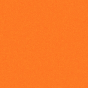 Coast Guard Solid Paper- Orange