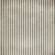 Stripes 54 Paper- Army Gray 1