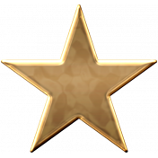 USA Gold Star 1