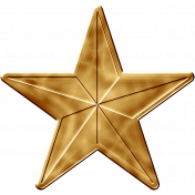 USA Gold Star 2