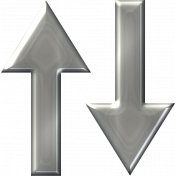 Belgium Silver Arrow 09