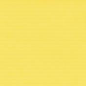 Belgium Solid Paper- Yellow